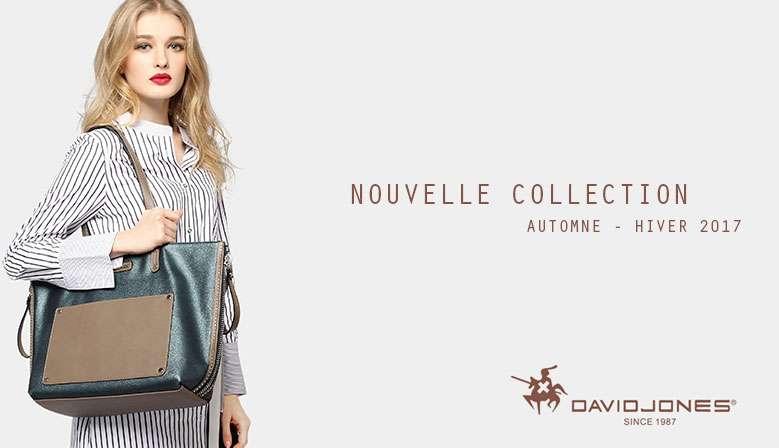 Nouvelle collection 2017 AUTOMNE HIVER 2017 David Jones